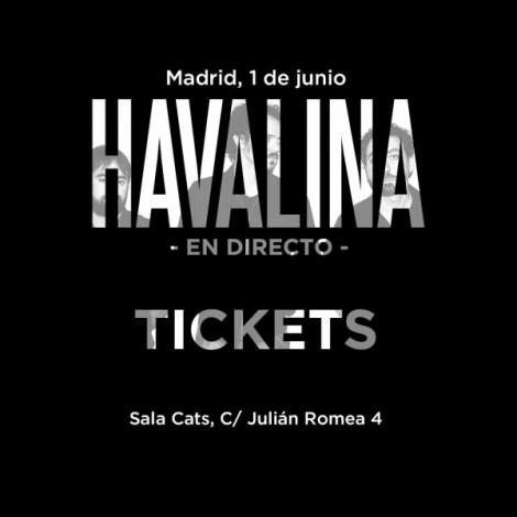 concierto-havalina-1-de-junio